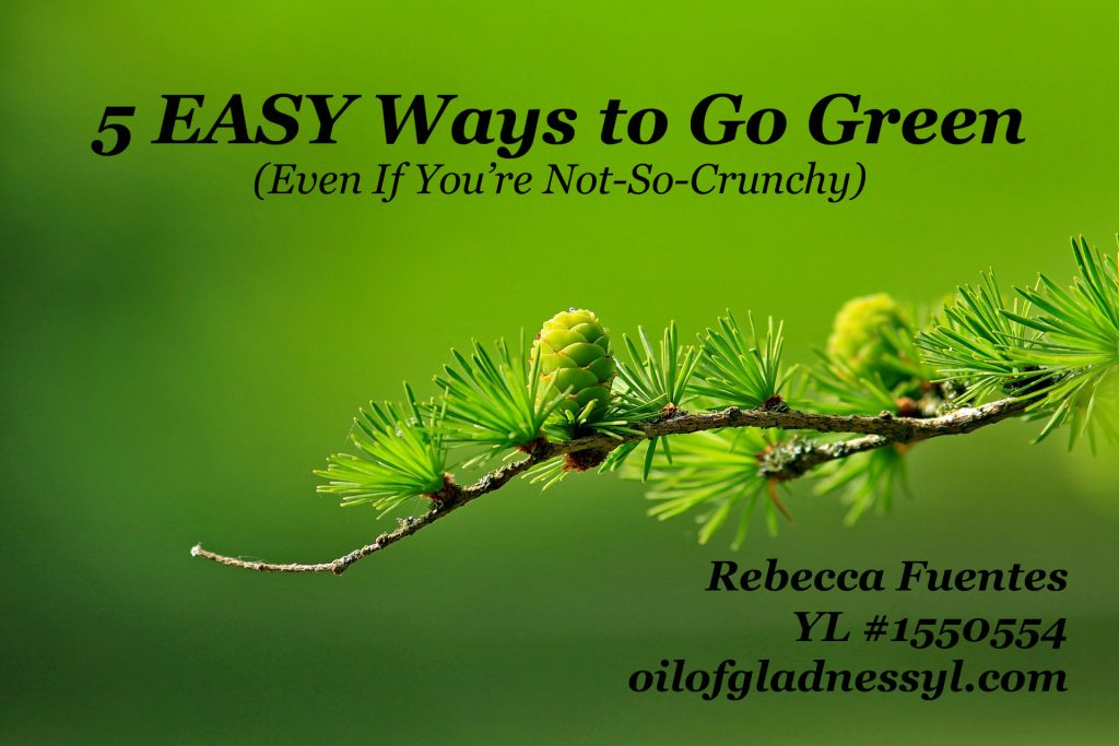 5 Easy Ways to Go Green